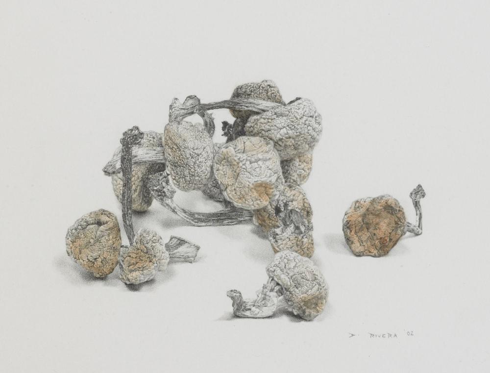 artwork-for-portfolio-051